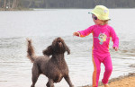 Dog friendly stays @ Copacabana Central Coast NSW