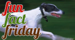 FUN FACT FRIDAY: 8 more fabulous dog facts