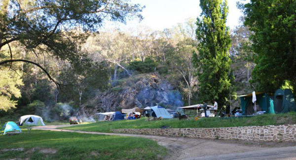 Ophir Dog friendly Campground NSW