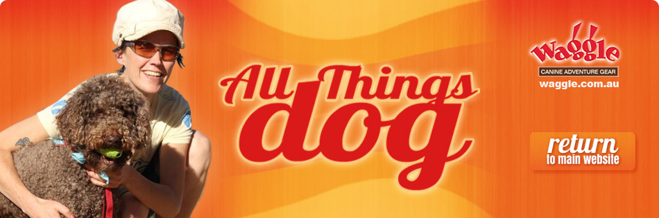 All Things Dog Blog