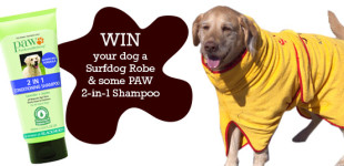 WIN a Surfdog Robe + PAW 2-in1 Conditioner