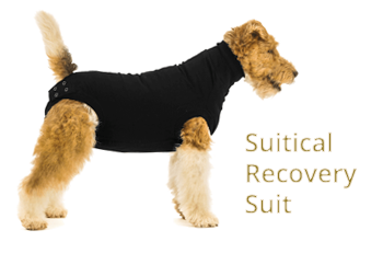 Suitical Recovery Suit
