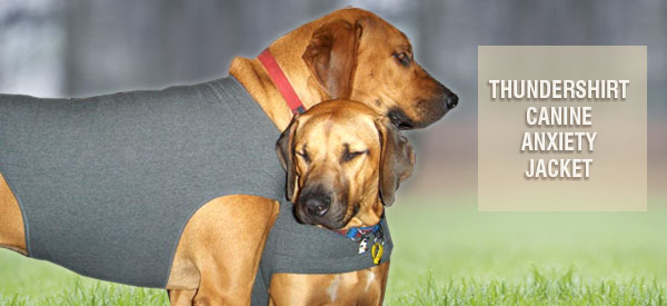 Thundershirt Dog Anxiety Jacket